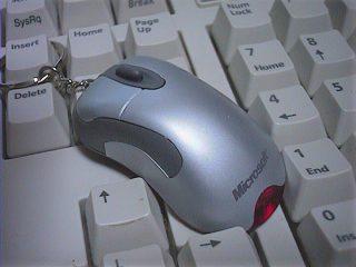 小さなマウス…じゃないです