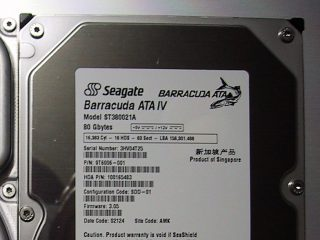 Barracuda ATA IV 80GB